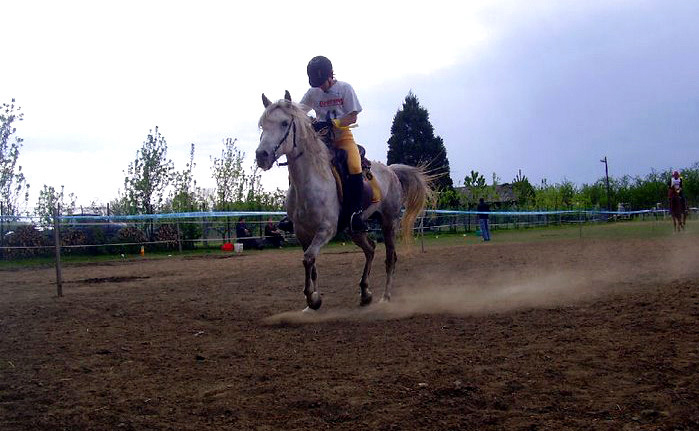 ENDURANCE AND MILITARY HORSE RIDING ON THE SLOPES OF PAPUK