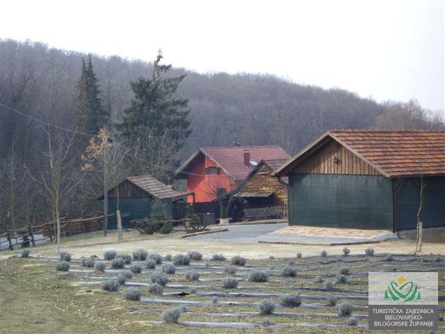 Romska-kuca-05